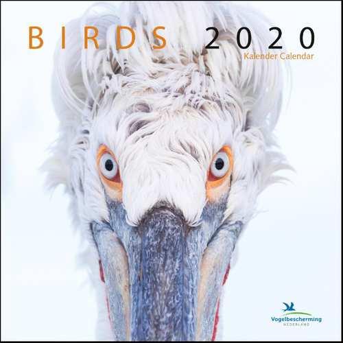 Afbeelding van Birds maandkalender 2020, vogelbescherming