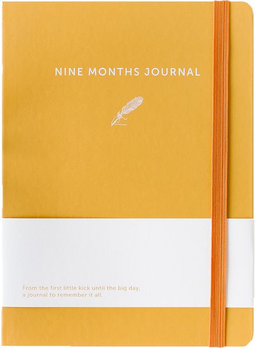 Afbeelding van Nine Months Journal