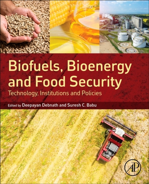 Afbeelding van Biofuels, Bioenergy and Food Security