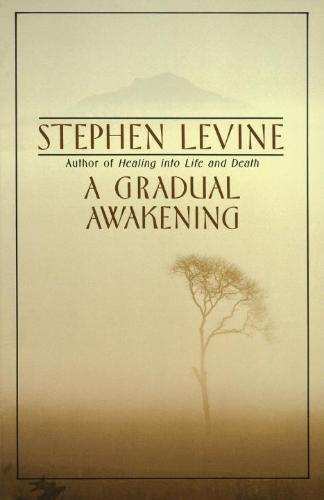 Afbeelding van A Gradual Awakening