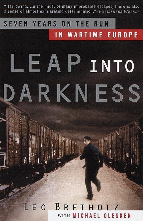 Afbeelding van Leap Into Darkness