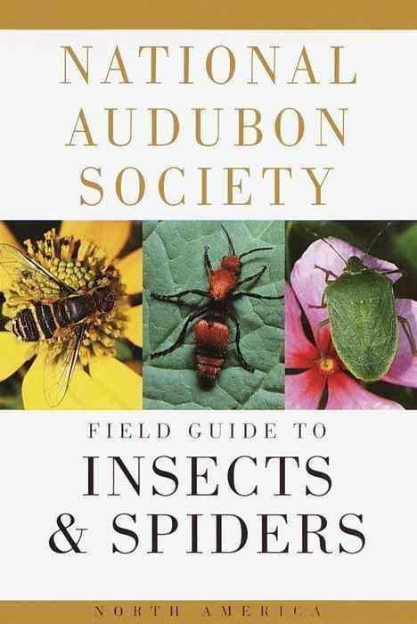 Afbeelding van National Audubon Society Field Guide to North American Insects and Spiders