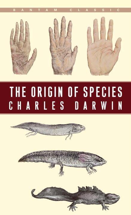 Afbeelding van The Origin of Species