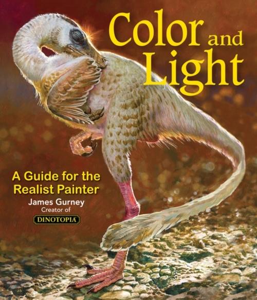 Afbeelding van Colour and Light