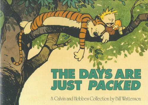 Afbeelding van Calvin and Hobbes. The Days Are Just Packed