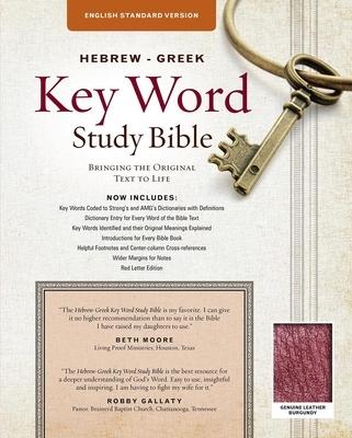 Afbeelding van Hebrew-Greek Key Word Study Bible-ESV