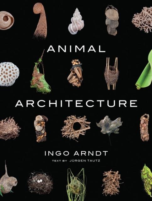 Afbeelding van Animal Architecture