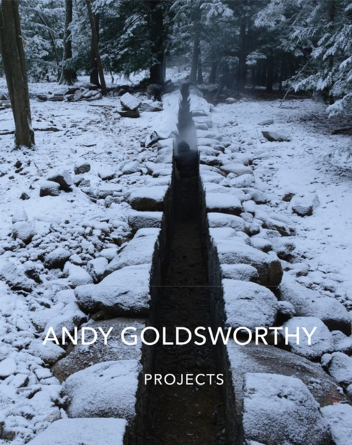Afbeelding van Andy Goldsworthy: Projects