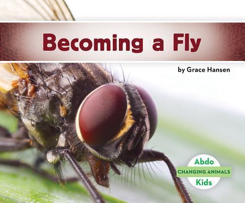 Afbeelding van Becoming a Fly