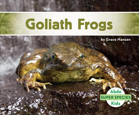 Afbeelding van Goliath Frogs