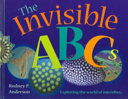 Afbeelding van The Invisible ABCs