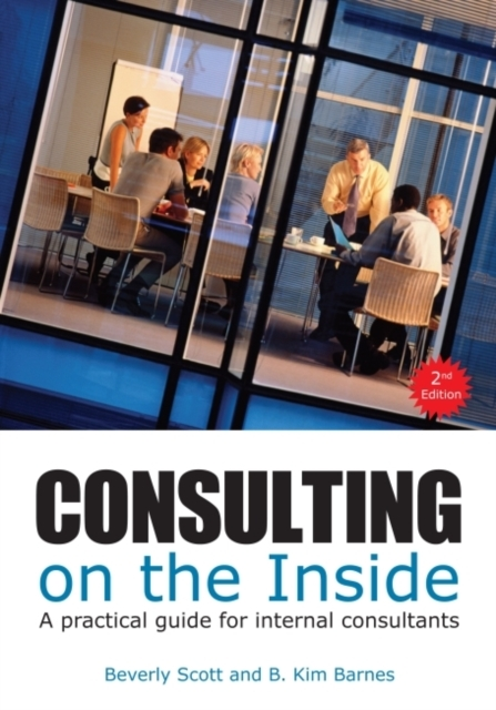 Afbeelding van Consulting on the Inside