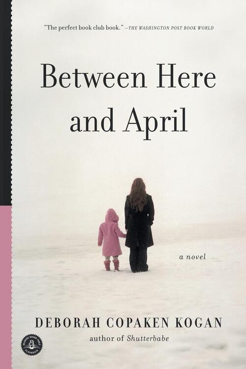 Afbeelding van Between Here and April