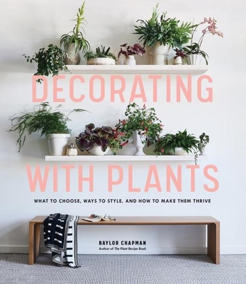 Afbeelding van Decorating With Plants