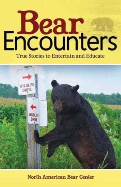 Afbeelding van Bear Encounters