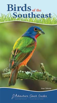 Afbeelding van Birds of the Southeast