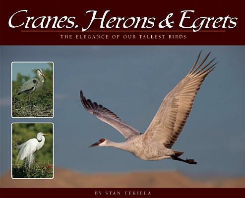 Afbeelding van Cranes, Herons & Egrets