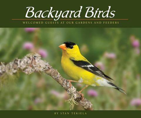 Afbeelding van Backyard Birds
