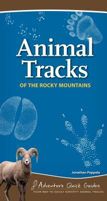 Afbeelding van Animal Tracks of the Rocky Mountains