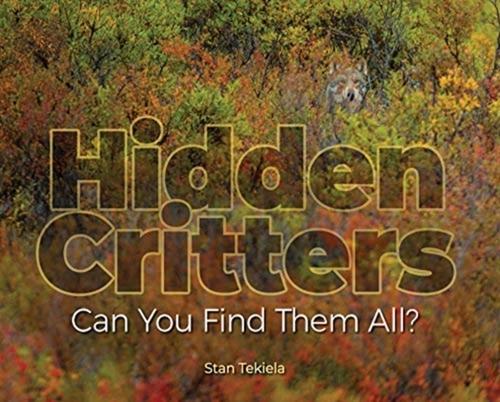 Afbeelding van Hidden Critters