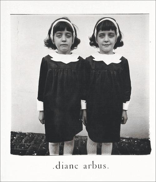 Afbeelding van Diane Arbus: An Aperture Monograph
