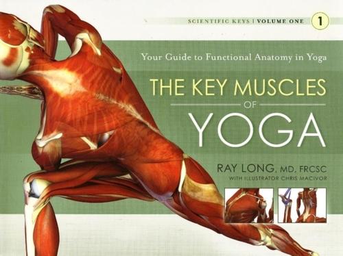 Afbeelding van The Key Muscles of Yoga