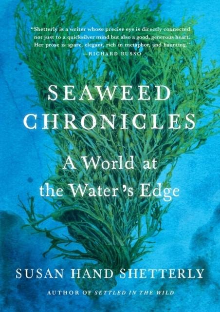 Afbeelding van Seaweed Chronicles