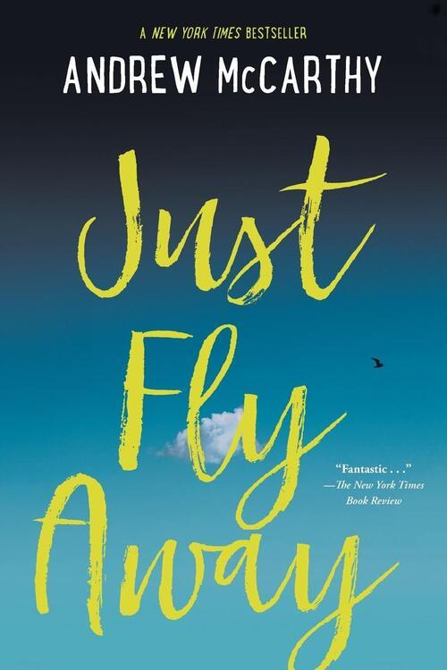 Afbeelding van Just Fly Away