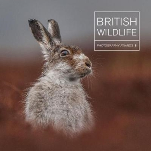 Afbeelding van British Wildlife Photography Awards 8