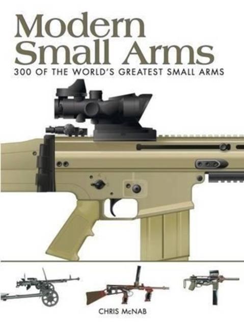 Afbeelding van Modern Small Arms