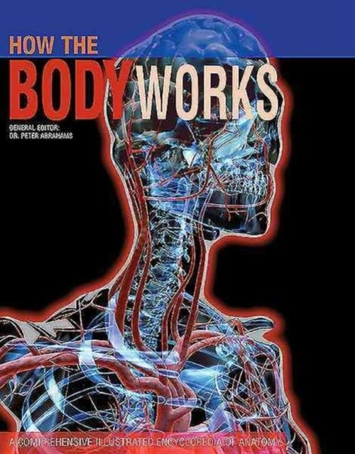 Afbeelding van How the Body Works