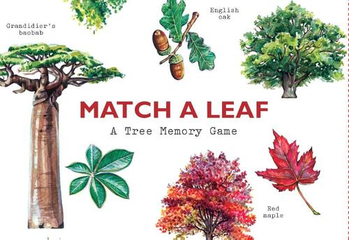 Afbeelding van Match a Leaf A Tree Memory Game:A Tree Memory Game