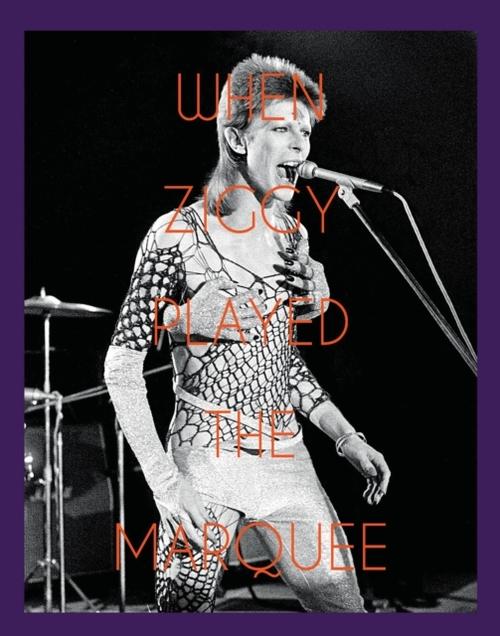 Afbeelding van When Ziggy Played the Marquee