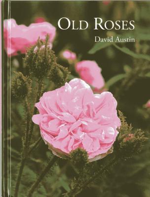 Afbeelding van Old Roses