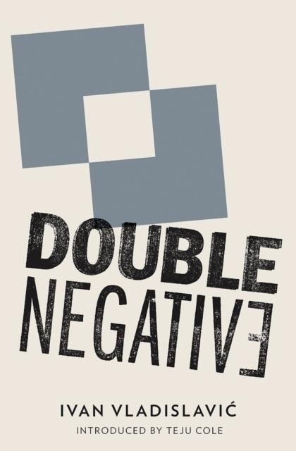 Afbeelding van Double Negative