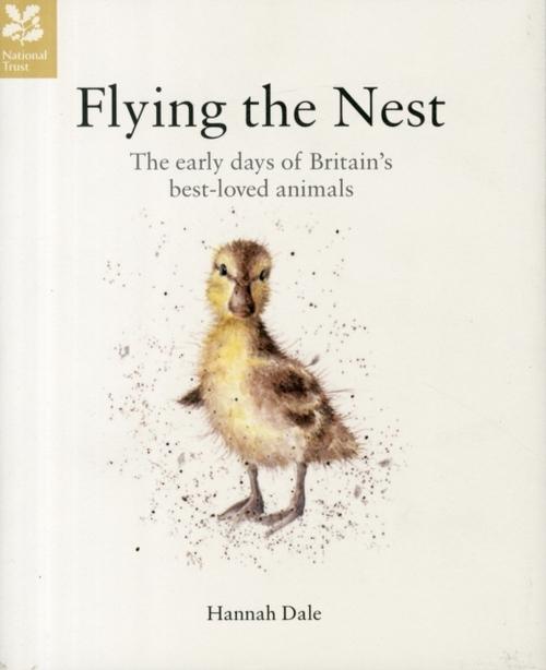Afbeelding van Flying the Nest
