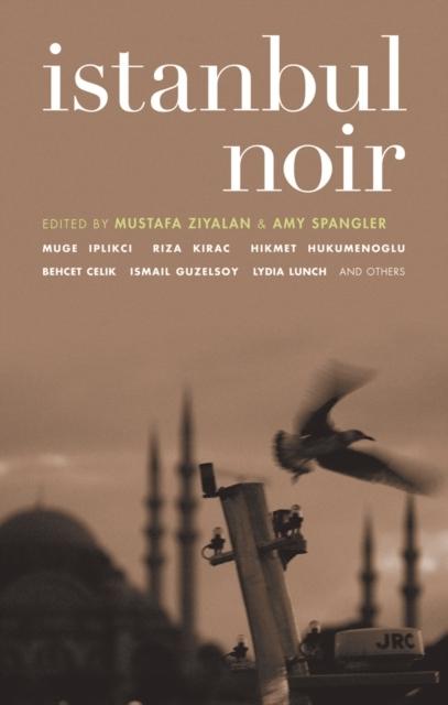 Afbeelding van Istanbul Noir