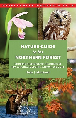 Afbeelding van Nature Guide to the Northern Forest