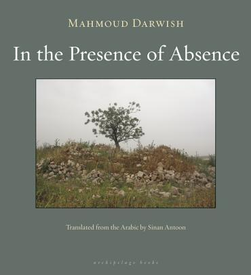 Afbeelding van In the Presence of Absence