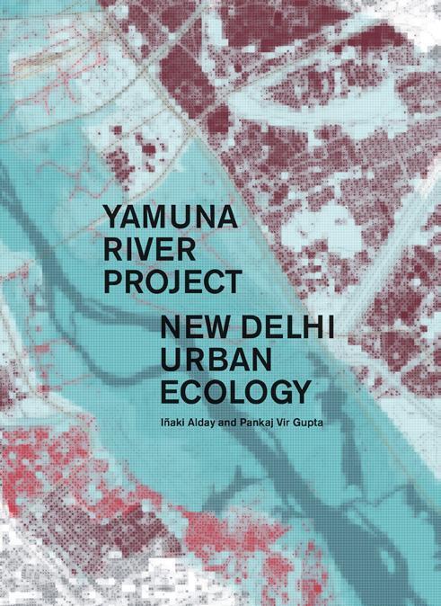 Afbeelding van Yamuna River Project