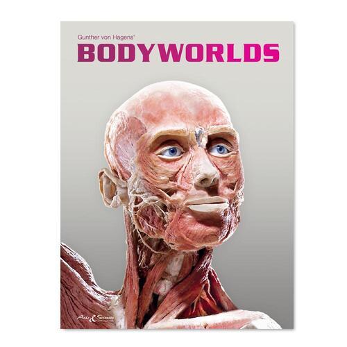 Afbeelding van Body Worlds