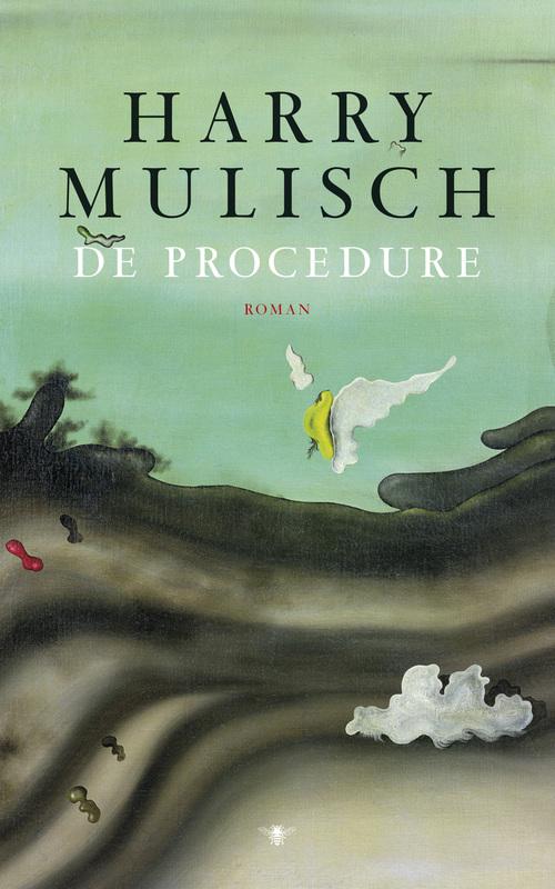 De procedure - Harry Mulisch