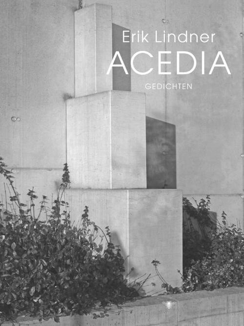 Afbeelding van Acedia