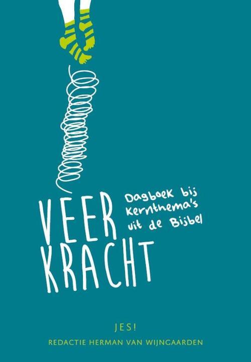 Veerkracht Paperback Op werkdagen voor 23:00 uur besteld, volgende dag in huis Kokboekencentrum Jeugd