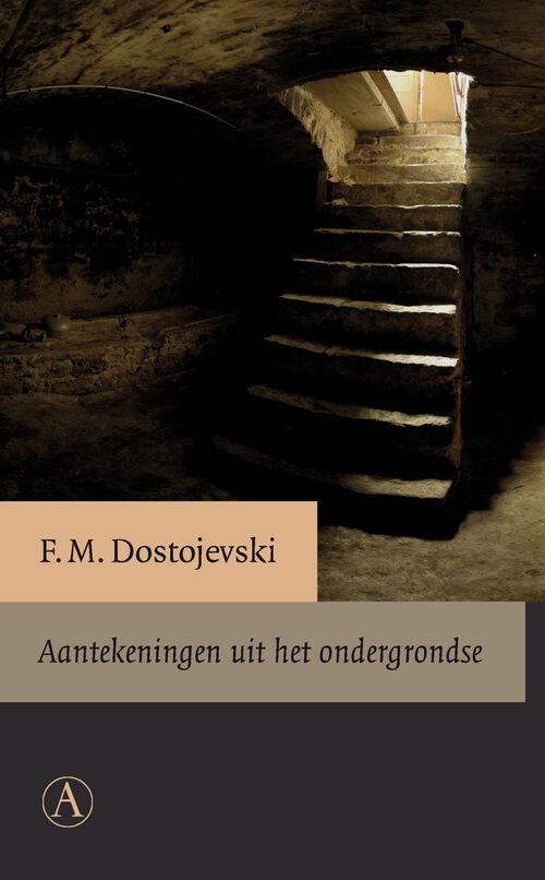 Afbeelding van Aantekeningen uit het ondergrondse