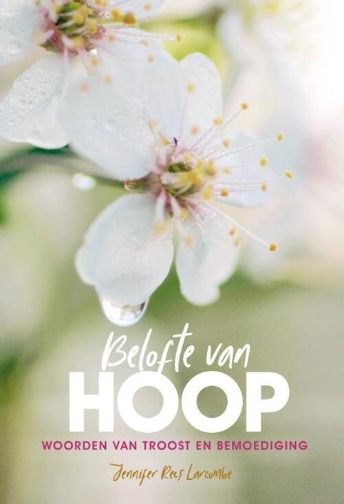 Afbeelding van Belofte van hoop