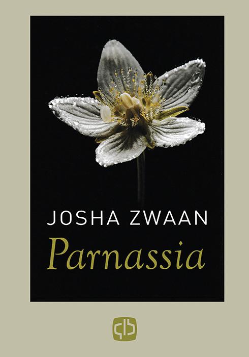 Grote Letter Bibliotheek Boeken > Romans > Alle romans Parnassia