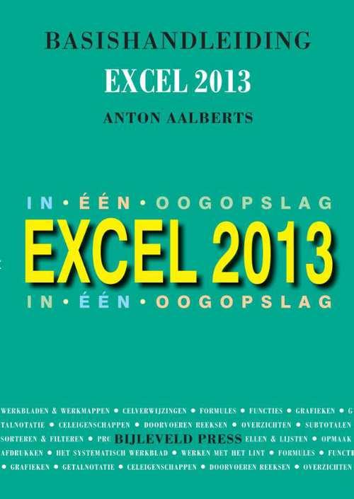 Afbeelding van Basishandleiding Excel 2013