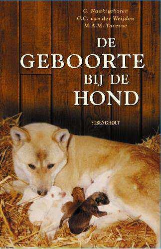 Afbeelding van De geboorte bij de hond en zijn wilde ve