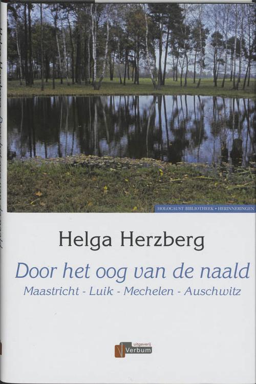 Door het oog van de naald - H. Herzberg
